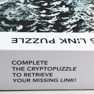 missing_puzzle_02