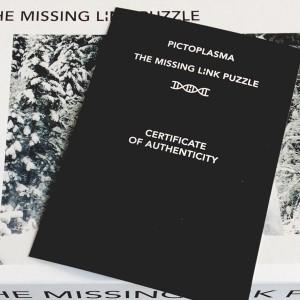missing_puzzle_03
